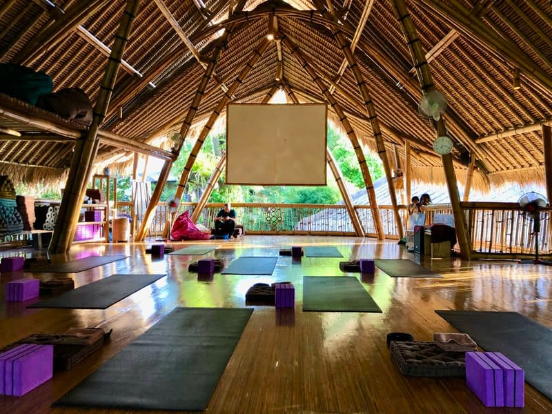 yoga teacher training bali 2020 43 My Power of Now Oasis Yoga Teacher Training in Bali